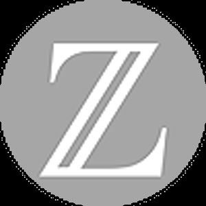Логотип Битзени