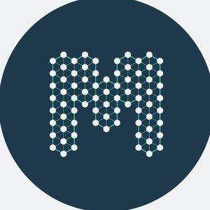 Логотип BlockMesh