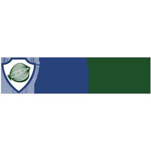 Логотип ДипОнион