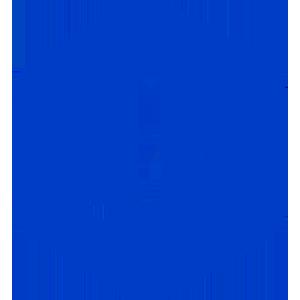 Логотип Jibrel Network Token