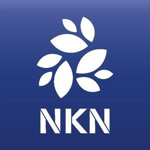 Логотип NKN