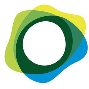 Логотип Paxos Standard