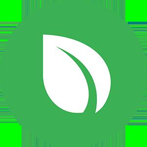 Логотип Пиркоин