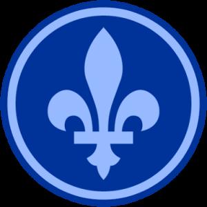 Логотип Quebecoin