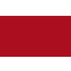 logo SingularDTV