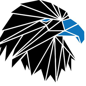Логотип Unified Society USDEX
