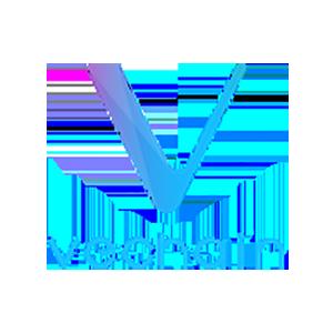 Логотип ВиЧейн