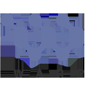 Логотип WarpCoin